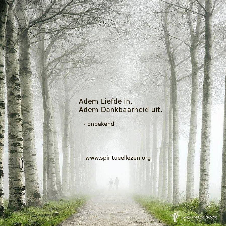 Q: Onbek - Adem Liefde in, Lars van de Goor